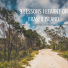 9 lessons I learnt on Fraser Island